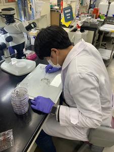 연구소 실험 모습의 사진 2